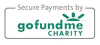 GoFundMe Secure Donation